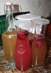 There are many options for jars. As long as it creates a tight seal, it will build carbonation during the second ferment.